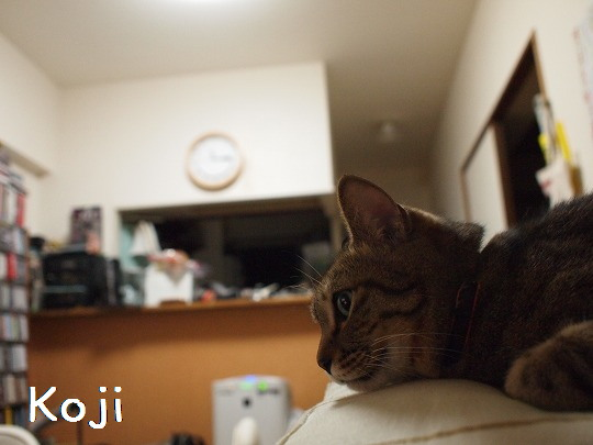 画像 063ー1.jpg